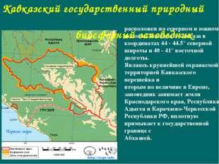расположен на северном и южном склонах Западного Кавказа в координатах 44 - 4