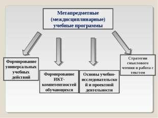 Стратегии смыслового чтения и работа с текстом Метапредметные (междисциплинар