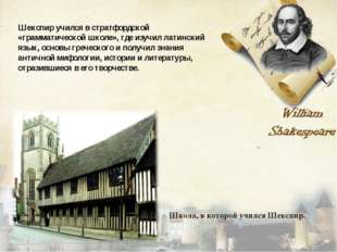 Шекспир учился в стратфордской «грамматической школе», где изучил латинский я