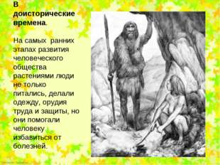 На самых  ранних этапах развития человеческого общества растениями люди не то