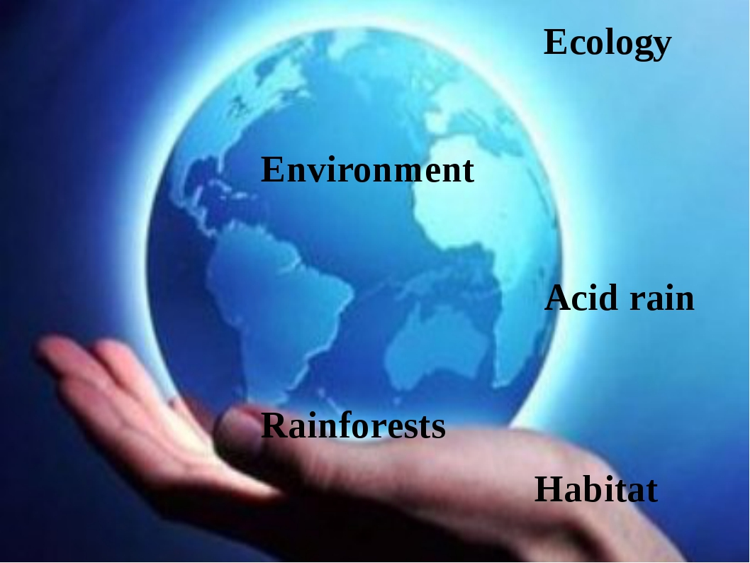 Ecology Environment Acid rain Rainforests Habitat
