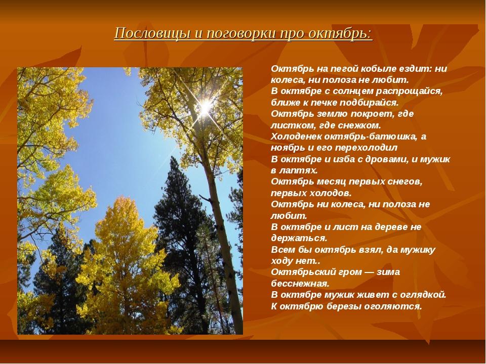 Пословицы и поговорки про октябрь: Октябрь на пегой кобыле ездит: ни колеса,...