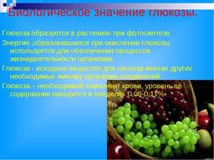 Биологическое значение глюкозы. Глюкоза образуется в растениях при фотосинтез