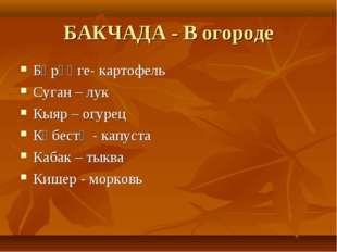 БАКЧАДА - В огороде Бәрәңге- картофель Суган – лук Кыяр – огурец Кәбестә - ка
