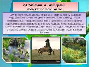 2.4 Табиғатқа қамқорлық – адамзатқа қамқорлық Алуан түсті гүлдер алқабы, сайр