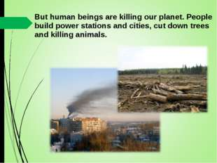 But human beings are killing our planet. People build power stations and citi