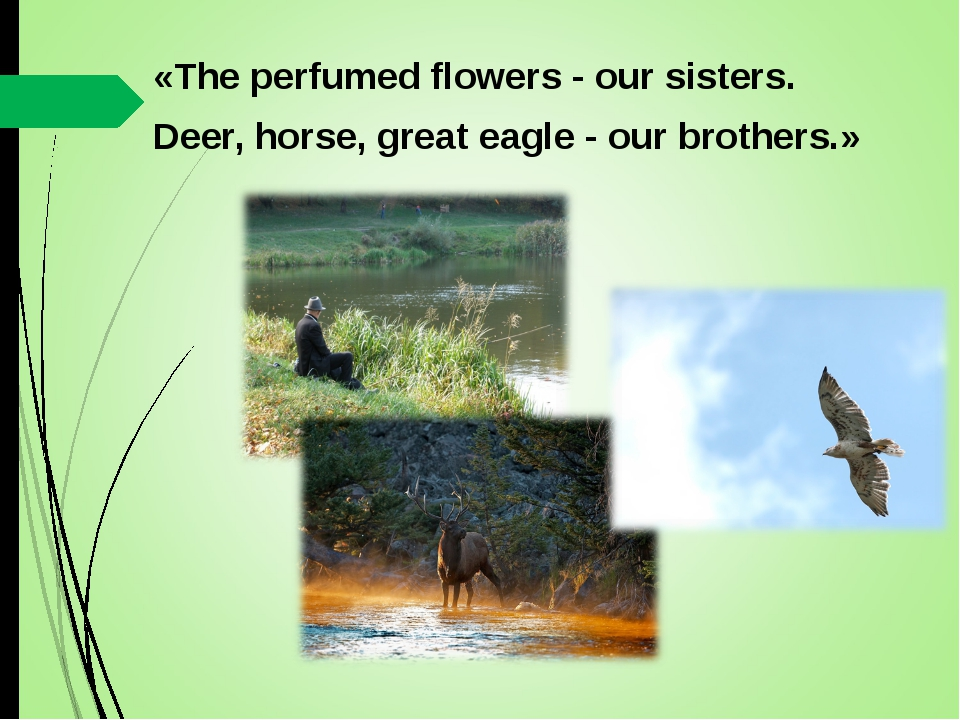 «The perfumed flowers - our sisters. Deer, horse, great eagle - our brothers.»