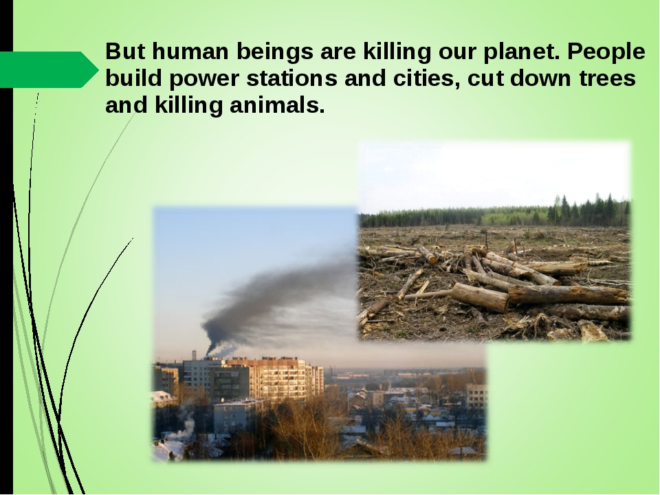 But human beings are killing our planet. People build power stations and citi...