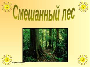 Мармылёва И.Е. Мармылёва И.Е.