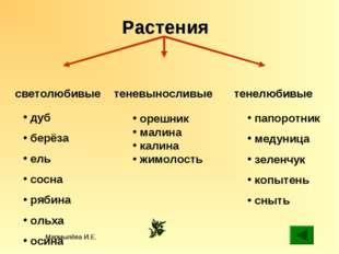 Мармылёва И.Е. Растения светолюбивые теневыносливые тенелюбивые орешник малин
