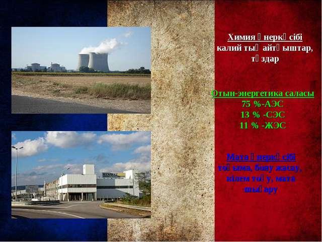 Химия өнеркәсібі калий тыңайтқыштар, тұздар Отын-энергетика саласы 75 %-АЭС 1...