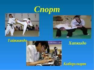 Киберспорт Хапкидо Тайквандо Спорт