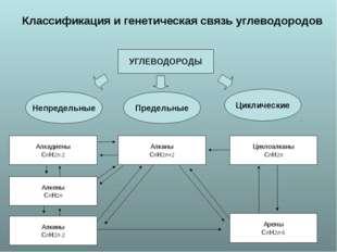 Классификация и генетическая связь углеводородов УГЛЕВОДОРОДЫ Непредельные П