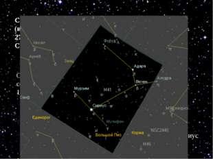 Самая близкая из других звёзд – АЛЬФА ЦЕНТАВРА (из созвездия Центавра) распол