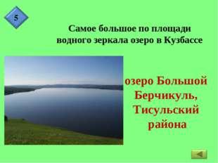 Самое большое по площади водного зеркала озеро в Кузбассе