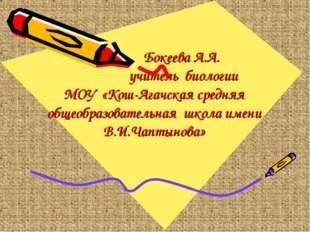 Бокеева А.А. учитель биологии МОУ «Кош-Агачская средняя общеобразовательная