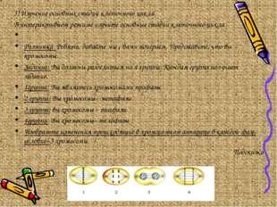 3) Изучение основных стадий клеточного цикла. В интерактивном режиме изучите