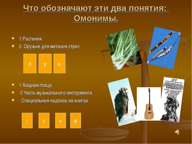 Что обозначают эти два понятия: Омонимы. 1.Растения. 2. Оружие для метания ст...