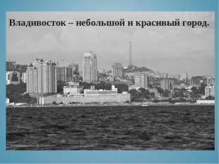 Владивосток – небольшой и красивый город.