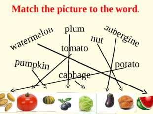 aubergine plum potato tomato cabbage pumpkin watermelon nut Match the picture
