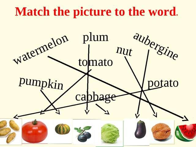 aubergine plum potato tomato cabbage pumpkin watermelon nut Match the picture...