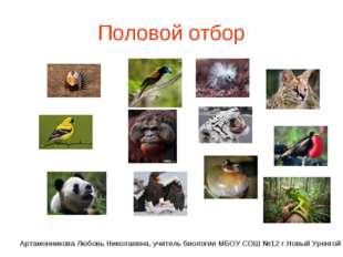 Половой отбор Артамонникова Любовь Николаевна, учитель биологии МБОУ СОШ №12