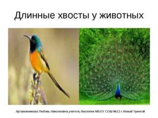 Длинные хвосты у животных Артамонникова Любовь Николаевна,учитель биологии МБ