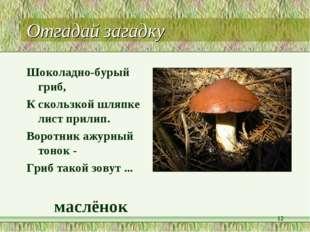 Отгадай загадку Шоколадно-бурый гриб, К скользкой шляпке лист прилип. Воротни