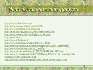 Использованная литература * http://www.grib.softrain.info/ http://www.rosfoto