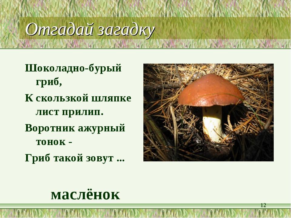 Отгадай загадку Шоколадно-бурый гриб, К скользкой шляпке лист прилип. Воротни...