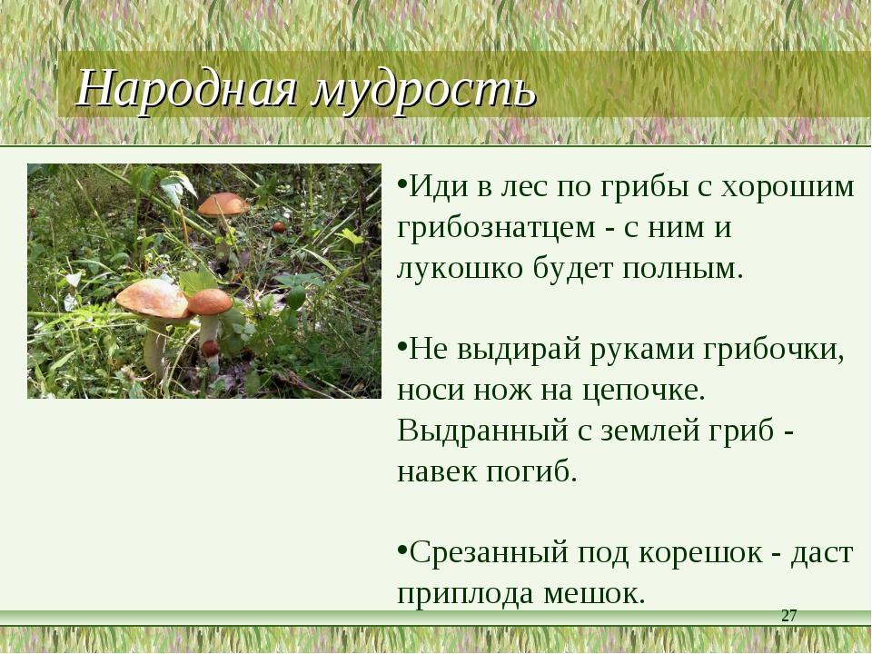 Народная мудрость * Иди в лес по грибы с хорошим грибознатцем - с ним и лукош...