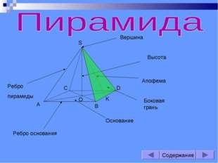S A B C D O K Вершина Основание Высота Апофема Ребро пирамиды Ребро основания