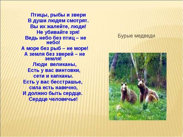 Птицы, рыбы и звери В души людям смотрят. Вы их жалейте, люди! Не убивайте з...