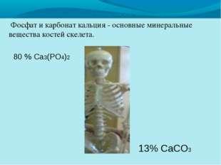Фосфат и карбонат кальция - основные минеральные вещества костей скелета. 80