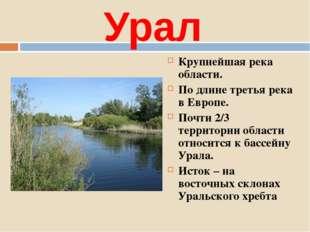 Урал Крупнейшая река области. По длине третья река в Европе. Почти 2/3 террит