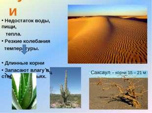 пустыни Недостаток воды, пищи, тепла. Резкие колебания температуры. Длинные к