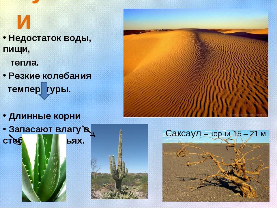 пустыни Недостаток воды, пищи, тепла. Резкие колебания температуры. Длинные к...