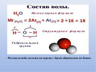 - Молекула воды похожа на персик с двумя абрикосами по бокам.