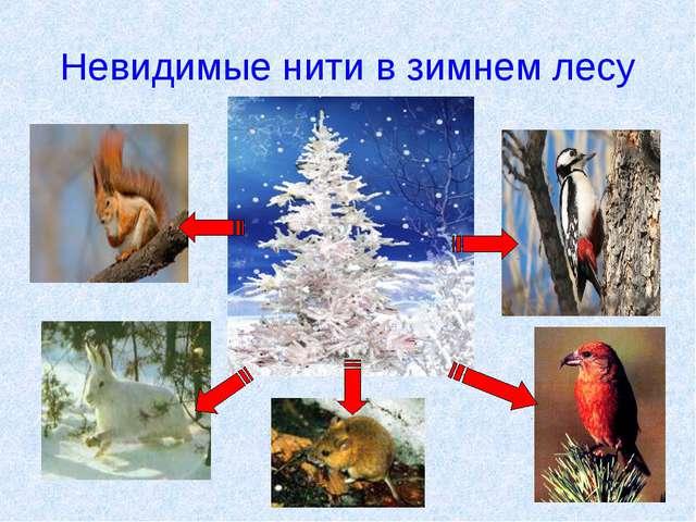 Невидимые нити в зимнем лесу