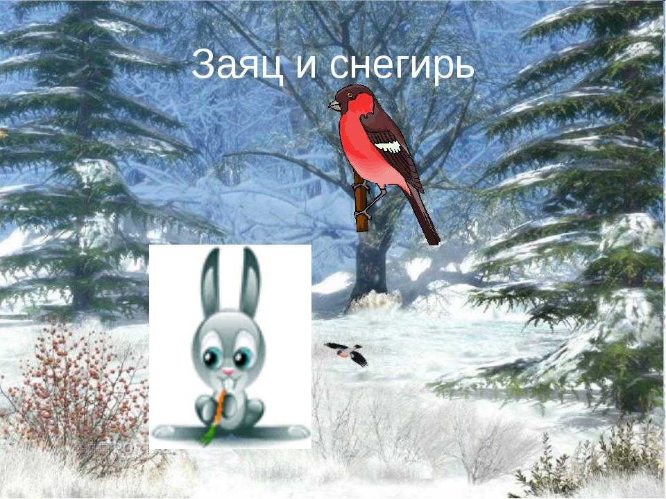 Заяц и снегирь