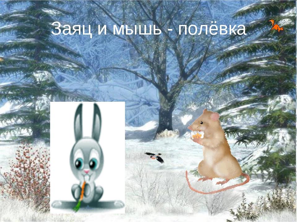 Заяц и мышь - полёвка
