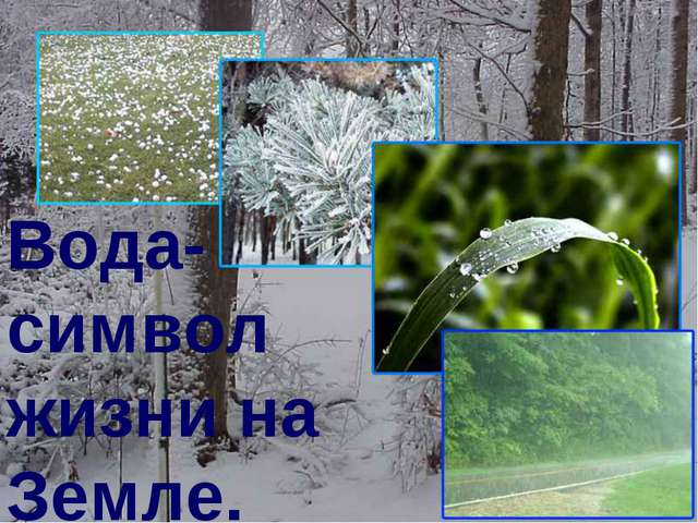 Вода- символ жизни на Земле.