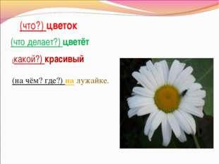 (что?) цветок (что делает?) цветёт (какой?) красивый (на чём? где?) на лужайке.