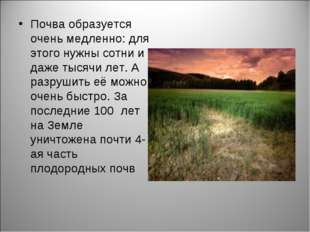 Почва образуется очень медленно: для этого нужны сотни и даже тысячи лет. А р