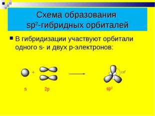Схема образования sp2-гибридных орбиталей В гибридизации участвуют орбитали о