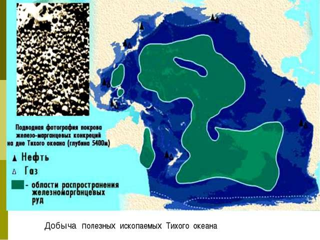 Добыча полезных ископаемых Тихого океана