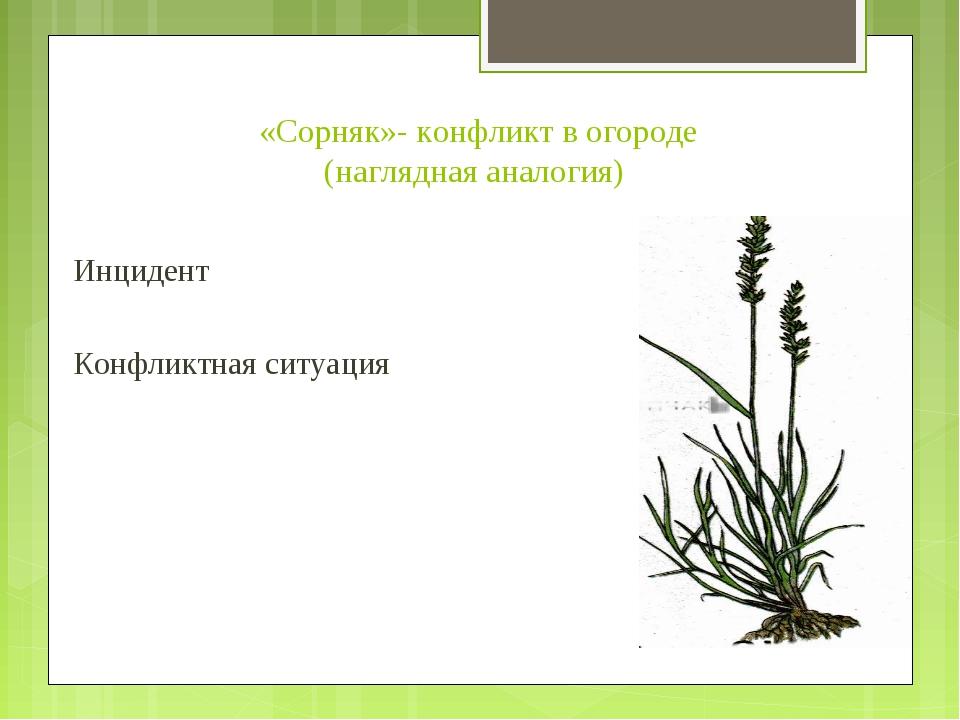 «Сорняк»- конфликт в огороде (наглядная аналогия) Инцидент Конфликтная ситуация