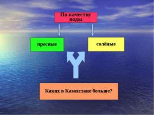По качеству воды пресные солёные Каких в Казахстане больше?