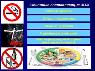 Основные составляющие ЗОЖ Отказ от курения Отказ от алкоголя Отказ от наркоти