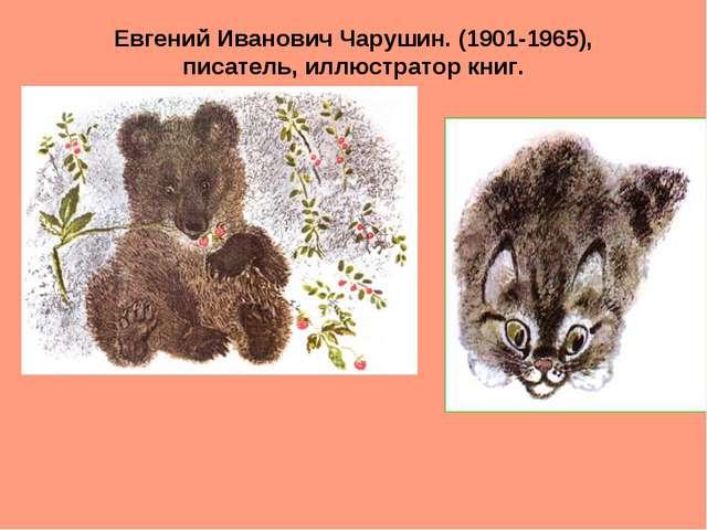 Евгений Иванович Чарушин. (1901-1965), писатель, иллюстратор книг.